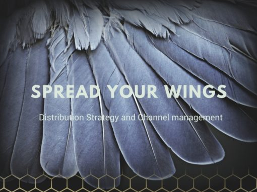 Spread your wings-Distribution Strategy and Channel Management